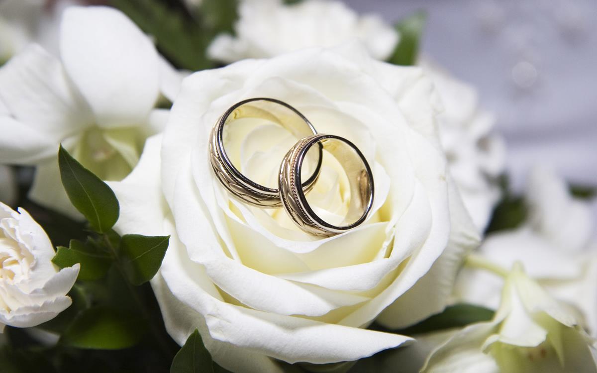 پسزمینه دفتر ازدواج 4 تهران